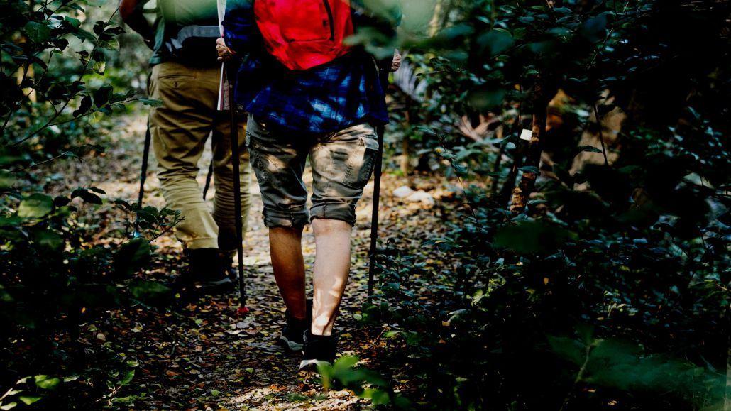 nordic_walking_baner